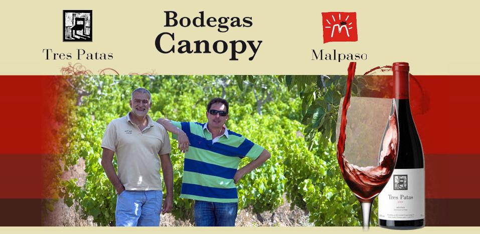 Alfonso Chacón y Belarmino Fernández de Bodegas Canopy.