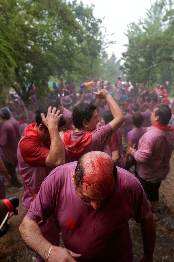 La Batalla del Vino. Haro, La Rioja.
