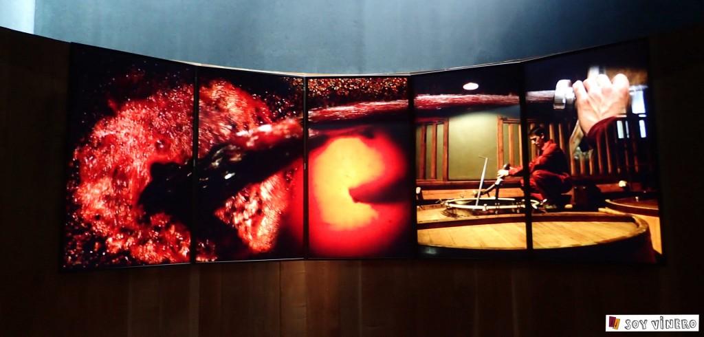 Audiovisuales elaboración del vino. Museo Vivanco de la Cultura del Vino.