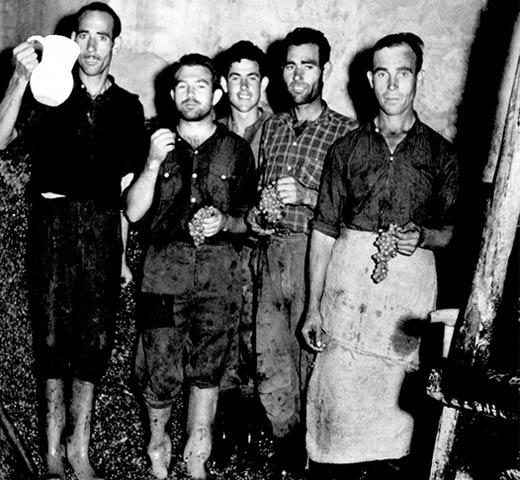 Primeras generaciones Bodegas Grupo Yllera, Rueda, Valladolid.