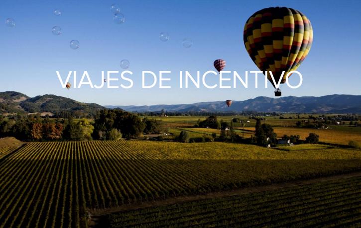 Viajes de incentivos en www.turismodevino.com.