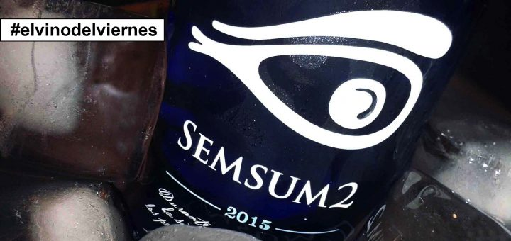 modelo-imagen-semsum-2