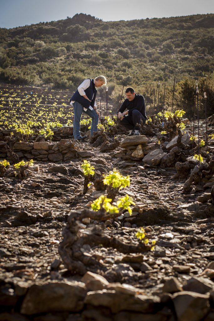 'Tras las viñas. Un viaje al alma de los vinos'. Josep Roca e Inma Puig. Fotografías: Josep Oliva.