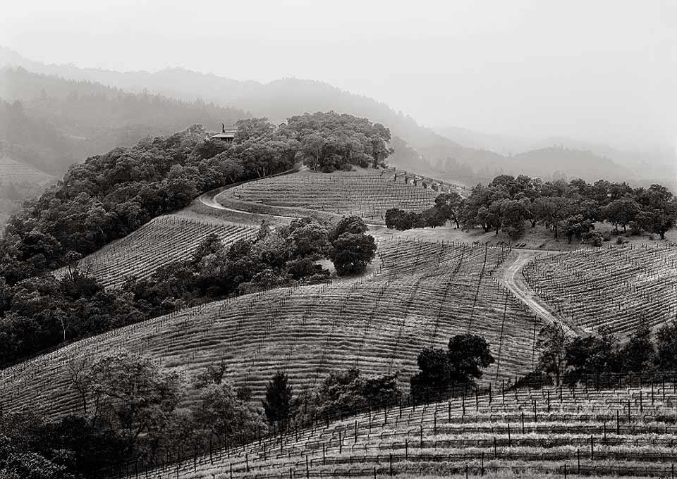 Harlan Estate, California EE.UU.